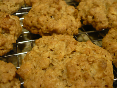 coconut-chocolate-oatmeal-cookie.jpg